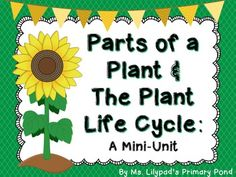 Unit on the plant life cycle and parts of a plant!  Worksheets, posters, printable books for students to read, writing activities, and math activities. $