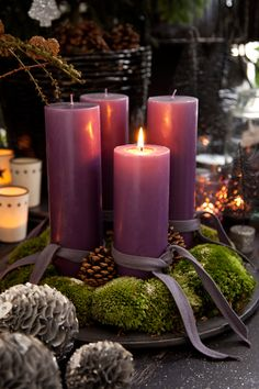 Candles for Advent Purple Christmas, Noel Christmas, Christmas Is Coming, Christmas And New Year, Winter Christmas, Christmas Crafts, Coastal Christmas, Christmas Wreaths, Christmas Candle Decorations