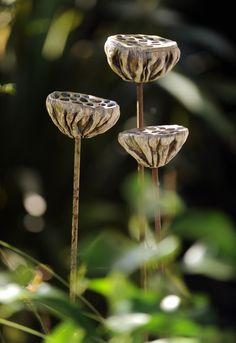 Lotus pods, set of three, stoneware on steels, £170.sucloudceramics.com