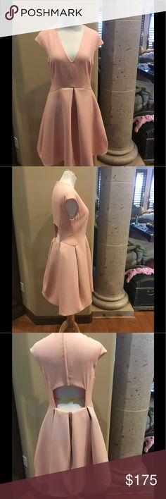 Halston Heritage Dress NWOT Baby pink cap sleeve A-line dress with V neck, cutout at back and zip closure at back. Fantastic Dress. Halston Heritage Dresses Midi