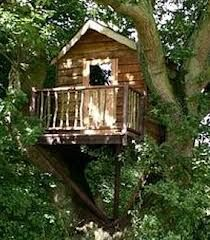 Simple Diy Treehouse For Kids Play 46 image is part of 70 Ideas Simple DIY Treehouse for Kids Play that You Should Make it! gallery, you can read and see another amazing image 70 Ideas Simple DIY Treehouse for Kids Play that You Should Make it! on website Simple Tree House, Tree House Plans, Cool Tree Houses, Tree House Designs, Trendy Tree, Play Houses, Easy Diy, Simple Diy, Kids Playing