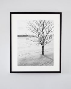 Shiver, black and white tree photography. Photo by Jennifer Squires. Tree Photography, Fine Art Photography, Landscape Photography, Nautical Prints, Black And White Tree, Winter Trees, Winter White, Large Wall Art, Nature Pictures