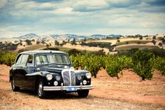 Travel in style around the Barossa Valley in South Australia