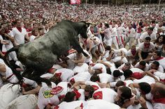 Running with the bulls.... This is just plain stupid. I don't think I would ever do this. I know people who have done it but it's just super dangerous....