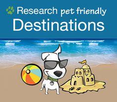 Go Pet Friendly Road Trip | The Ultimate Pet Friendly Road Trip