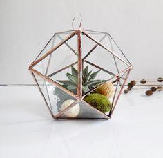 Hängende Glasterrarium, geometrische Glasterrarium für Innenc, Ikosaeder, moderne Pflanzgefäß von jacquiesummer auf Etsy https://www.etsy.com/de/listing/206198813/hangende-glasterrarium-geometrische