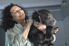 WildlifeSOS's Anti-Poaching Team has rescued an eight week old sloth bear cub from Indo-Nepal Border in collaboration with the forest department. The poachers were planning to smuggle the bear cub across to Nepal to sell the bear where it would have been harvested for its body parts or trained to be a performing bear using cruel methods. Currently, the bear cub has been safely brought to the ABRF. Geeta Seshamani, Co-Founder seen in the picture trying to comfort the baby bear.