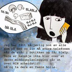 Norske Hemmeligheter