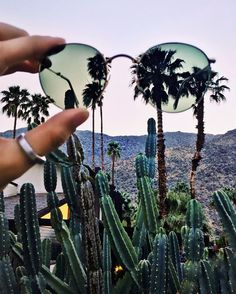 Made it to the desert with @rayban. Can't wait to share #coachella through my lens #ItTakesCourage  by iamgalla