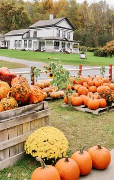 Restaurant Design Vintage, Vintage Design, New England Fall, New England Travel, Le Vermont, Vermont Winter, Shelburne Farms, Fall Pictures, Fall Season Pictures