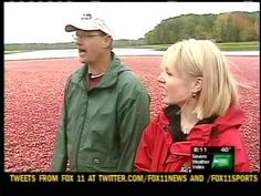 Cranberry Bog video 2 - Cranberry Thanksgiving