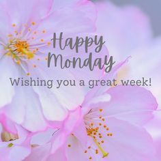 Good Morning Greeting Cards, Good Morning Messages, Good Morning Greetings, Good Morning Good Night, Good Afternoon, Morning Wish, Good Morning Quotes, Have A Happy Day, Happy Weekend