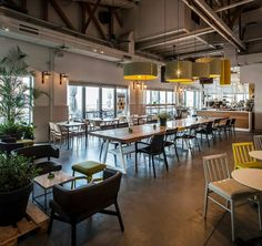 loveat organic coffee, Tel Aviv, 2014