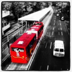 metrobus cd de mexico