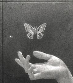 Keep your butterfly before the butter melted - Animals Tiktok Photo Wall Collage, Picture Wall, Aesthetic Art, Aesthetic Pictures, Black And White Aesthetic, Aesthetic Wallpapers, Art Inspo, Drawings, Instagram