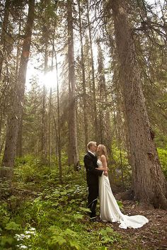 A stunning woodsy photo | Leslie Spurlock Photography
