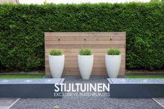Polyester hoogglans witte potten met siergrassen, waterelementen, watertafels ontwerp www.stijltuinen.nl