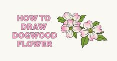 Learn to draw pretty dogwood flowers. This step-by-step tutorial makes it easy. Kids and beginners alike can now draw a great looking dogwood flowers. Pencil Drawings Of Flowers, Animal Drawings, Drawing Tutorials For Kids, Drawing Tips, Step By Step Painting, Step By Step Drawing, Learn To Draw Flowers, Angel Drawing, Popular Cartoons