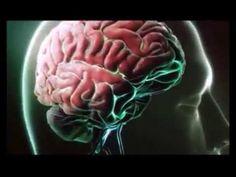 Beyninizi güçlendirmek için 10 altın öneri