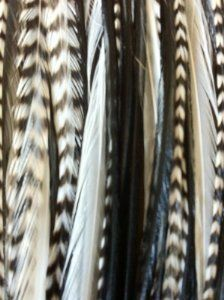 """Zebrz Feather Hair Extension 4""""-7"""" in Length with 5 Salon Quality Feathers for Hair Extension with Black & White American Rooster Feathers"""