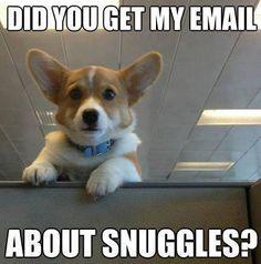 Snuggles?