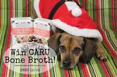 Enter to win Bone Broth for dogs from Caru! Day 3 of Beagles & Bargains Stocking Stuffer Giveaways #sponsored