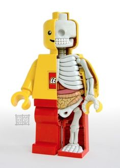 Creative but a little creepy! Mini Figure (©Lego) Hand sculpted interior anatomy by Jason Freeny Toy Art, Lego Hand, Anatomy Sculpture, Hello Kitty, 3d Prints, Child Life, Geeks, Creations, Geek Stuff