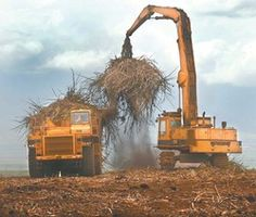 HC&S offers cane burn notifications - Mauinews.com | News, Sports, Jobs, Visitor''s Information - The Maui News