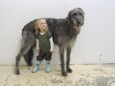 That's a big dog!  Big Dogs = Man's Best Friend / www.PetWellbeing.org