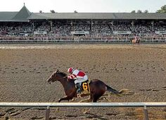 Songbird, with Mike Smith up, nears the finish, in front of a packed grandstand…