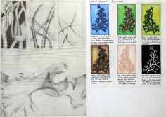 Google Image Result for http://www.amiria.co.nz/artist/wp-content/uploads/2011/09/GCSE-art-sketchbook-layout.jpg