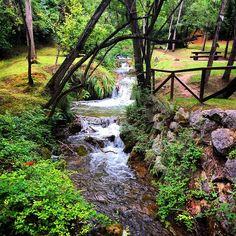 #cantabria #cantabriainfinita #naturaleza #verde #verano #rutas #cartes #paz #paseos #bosques #colors