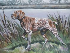 gsp German Shorthaired Pointer dog art print CANVAS by TheDogLover