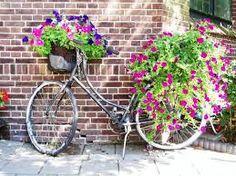 bici con flores