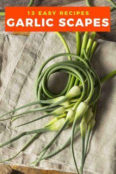 Recipe For Garlic Scapes, Scape Recipe, Garlic Scape Pesto, Garlic Recipes, Beef Recipes, Vegetarian Recipes, Cooking Recipes, Freezing Garlic, Recipes