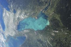 Late summer plankton blooms across much of Lake Ontario - Provided by Reuters