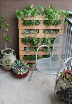 love this!!! would work on balconies! // Crate herb garden