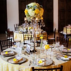 This reception decor has such a sweet rustic feeling about it!