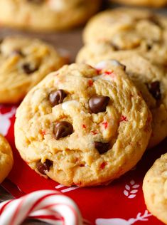 Chocolaty Candy Cane Cookies... a fun, delicious cookie that is perfect for the holidays!