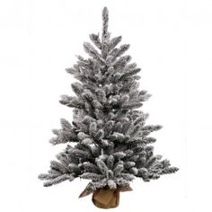 Image result for simple real christmas tree