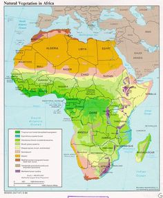 Vegetation Map of Africa