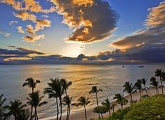 Maui! Will be here this summer! :)