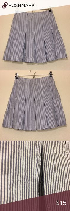 Sweet Striped Pleated Skirt Fun blue and white striped pleated skirt.  100% cotton. Has a side invisible zipper and hook closure. Measures from the top down at 17.5 inches. Excellent condition! Petite Sophisticate Skirts