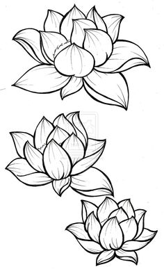 168 best 3333 images in 2019 house decorations bedroom decor  736x1208 drawing of lotus flower with leaf how to draw a lotus flower 7 blue lotus