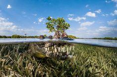 Elk jaar worden tijdens de Siena International Photo Awards prijzen uitgereikt voor de meest bijzondere reis...