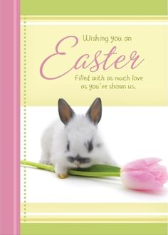 Click to send this real card by mail send your free easter card click to send this real card by mail send your free easter card if you have never used sendoutcards before add your own pictures and text negle Gallery