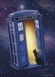 All of time & space and you can't decide in or out. Cats....
