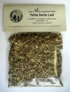 Yerba Santa Leaf is known as a sacred herb and is also used to increase psychic powers, and provide spiritual strength. Yerba Santa Leaf may be burned as an incense, added to smoking mixtures, carried in medicine pouches, sprinkled around or made into infusions.  Yerba Santa Leaf | Eriodictyon californicum | Herbal Medicine | Natural Remedies www.theancientsage.com