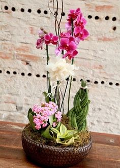 This flower has its own elegance and beauty. Not surprising that many people use orchid for their home decoration. Like these 17 captivating orchid arrangement ideas below. Orchid Centerpieces, Orchid Arrangements, Interior Design Plants, Plant Design, Arte Floral, Orchid Planters, Artificial Flowers And Plants, Christmas Arrangements, Plantar