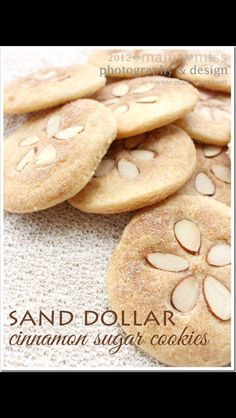 I'm thinking this must always be found in the cookie jar at the beach house! Pretty sure I can convince the lol ones I make them out of real sand dollars ;)
